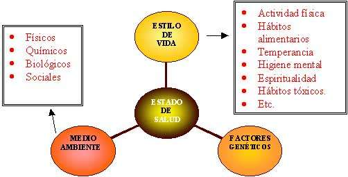 Diagrama Estado de Salud